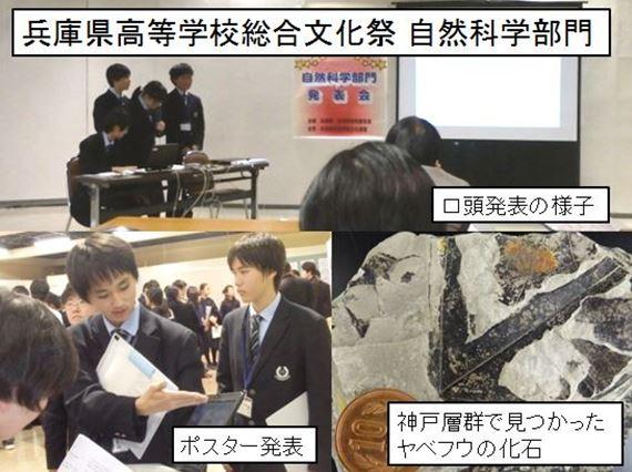 兵庫県総合文化祭 自然科学部門 口頭発表