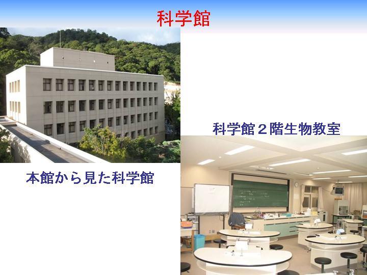 神戸高等学校画像