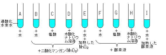の 実験 カタラーゼ